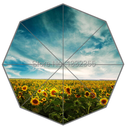 Landscape of Sunflower Painting Umbrella Unique Design Umbrellas Free Shipping(China (Mainland))