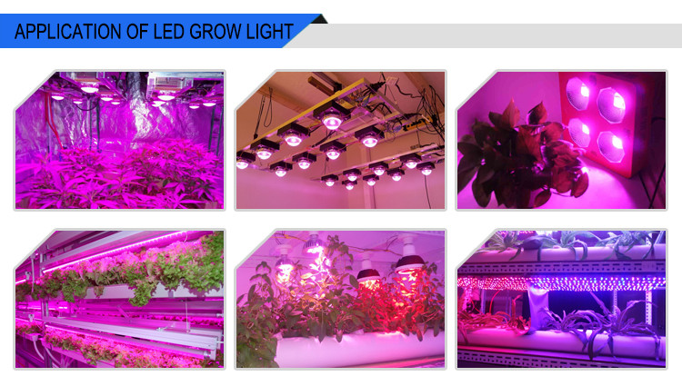 led grow light 05