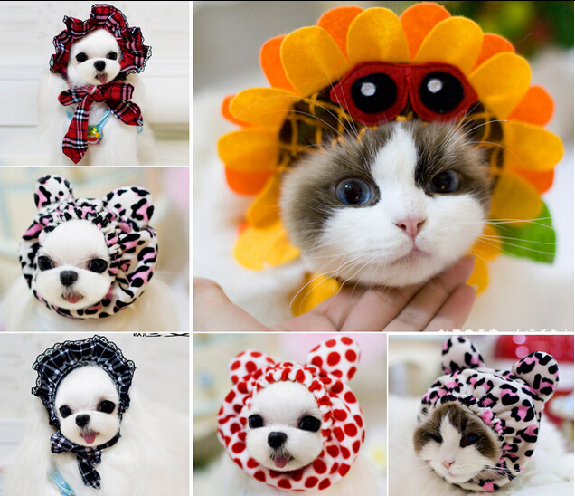 0876 Abby Pet Products Dog Supplies Dog Accessories Grooming Dog Hat Cat Cap Cat Hat Headdress Cosplay Funny 1PC(China (Mainland))