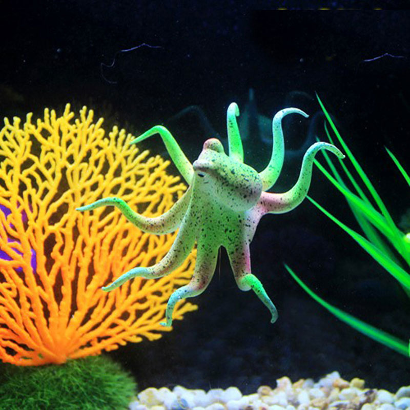 Popular aquarium squid buy cheap aquarium squid lots from for Octopus fish tank