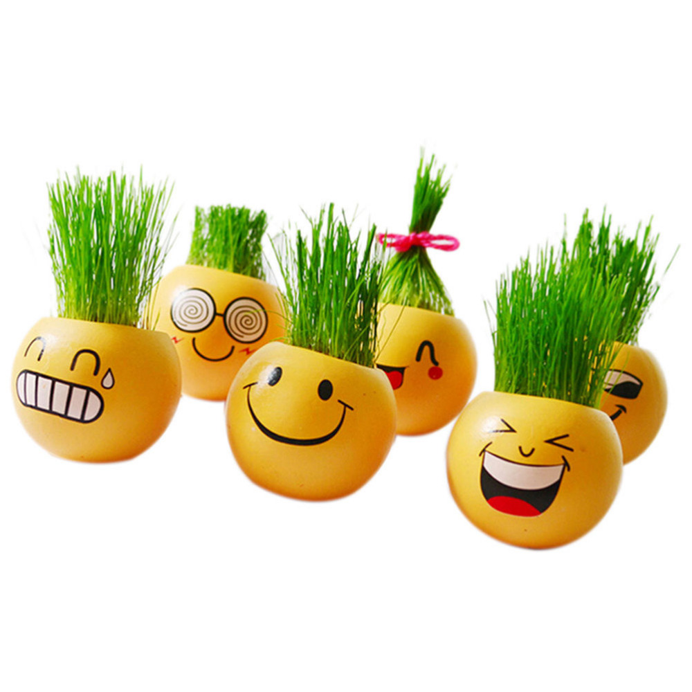 New Style Ceramic Cartoon Emoji Print Flower Pot with Magic Grass Plant Pot Grass Seed(China (Mainland))