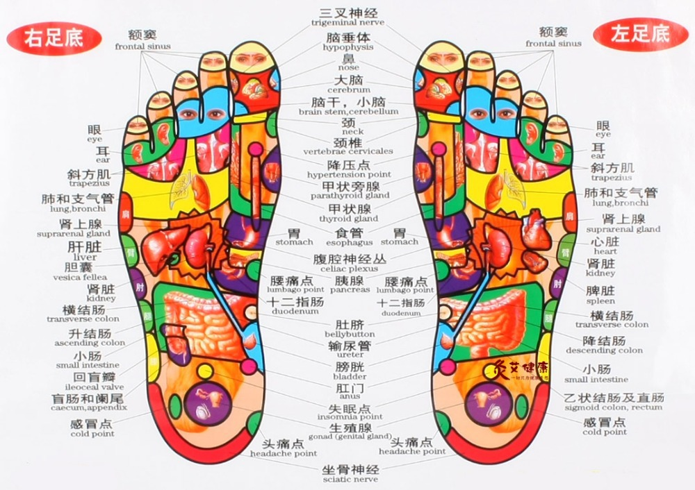 map of foot pain with Chinese Foot Chart on Symptoms Of Gout moreover Medmap also 206 as well 7382652228 moreover Wrist Splints.