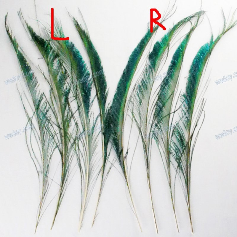 """50pcs10-13""""(25-33cm) Peacock Sword Feather Natural Green Iridescent Left & Right Side AE00331(China (Mainland))"""