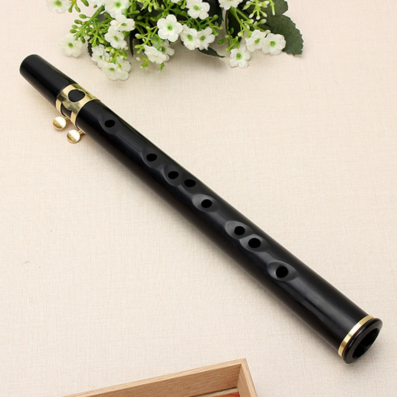 New Arrival Xaphoon Mini Sax Alto C Tune Mini Black Saxophone Woodwind Musical Instruments RC Toys Gift For Children(China (Mainland))