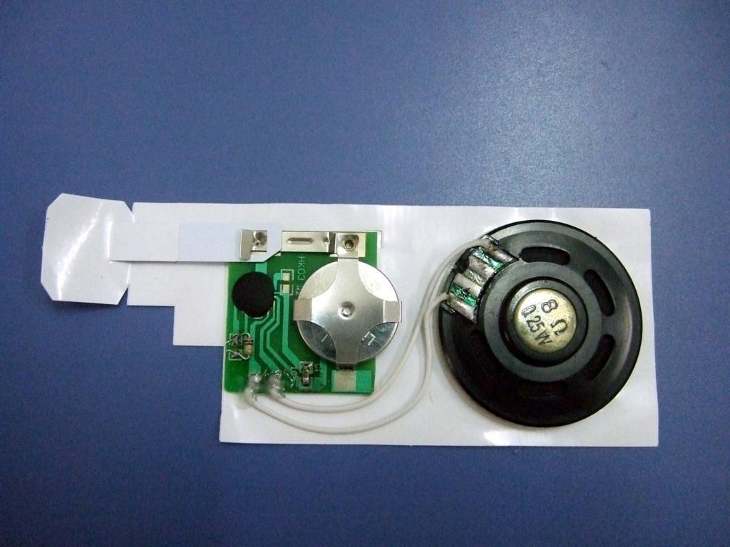 New factory good price sound module(China (Mainland))