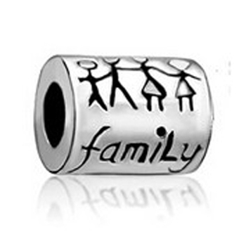 slide charm Free shipping FAMILY beads fit Pandora charm bracelet hand jewelry accessories Christmas gift