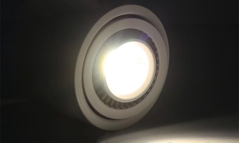 downlight 12