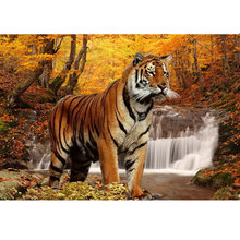 Buy 5d 3d full drill square diamond painting autumn mosaic picture of rhinestones diamond embroidery cross-stitch kits animals tiger for $6.44 in AliExpress store