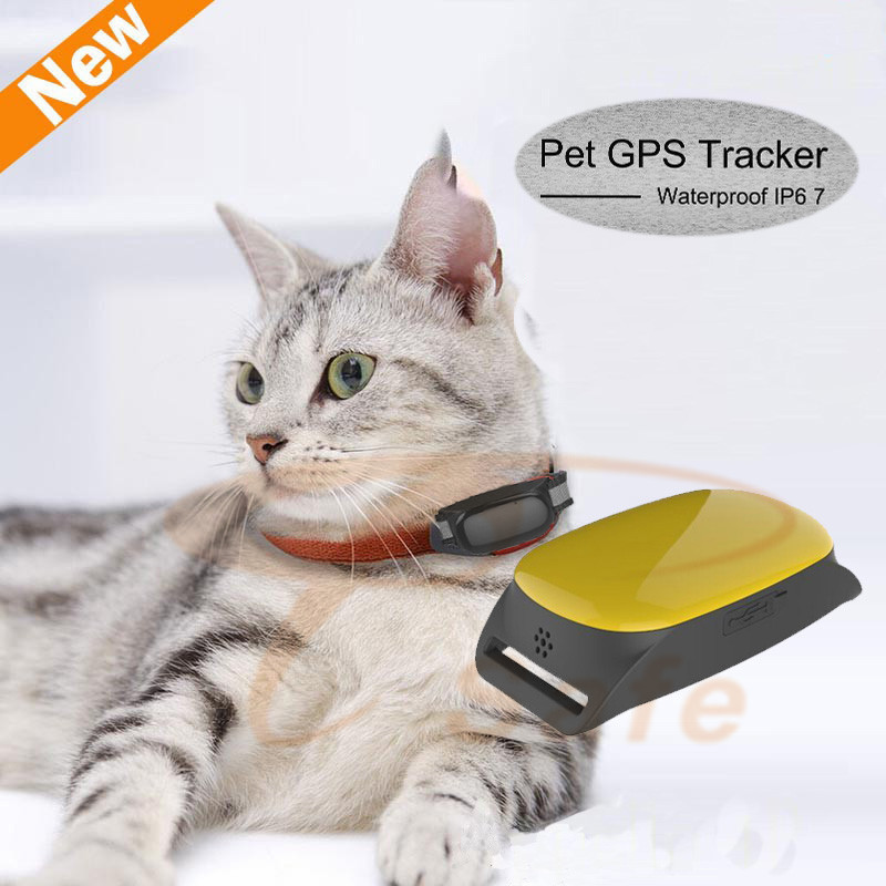 Mini Cat dog GPS Tracker with Collar Waterproof Real Time Locator Rastreador Localizador Chip for Pets Dogs Perro Pigs Tracking(China (Mainland))
