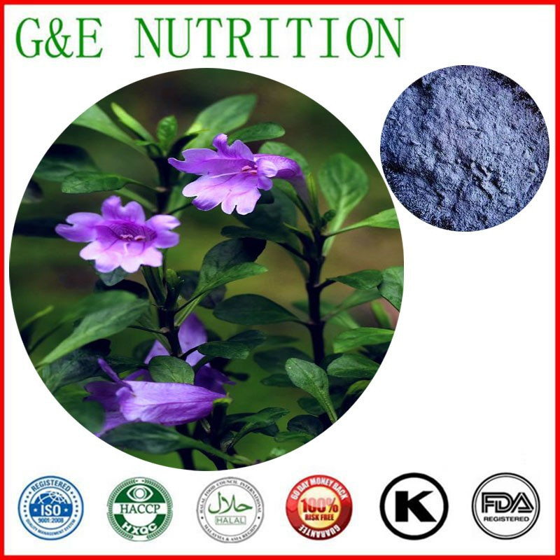 Здесь можно купить  Touchhealthy supply Facroty supply Natural indigo extract/Indigo Naturalis Extract powder    5:1  800g  Красота и здоровье