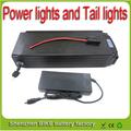 Rear rack 20Ah 48V Akku 48v 1000w lithium ion battery for ebike battery pack with Power