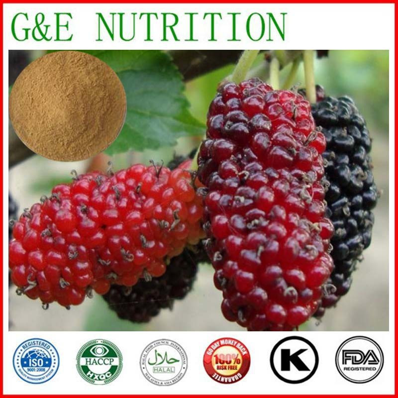 Top Quality Mulberry Fruit Extract 10:1 300g<br><br>Aliexpress