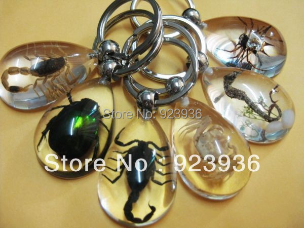 free shipping wholesale 42pcs fashion key-chains big green stone beetle spider scorpion crab sea horse mix style vogue gift(China (Mainland))