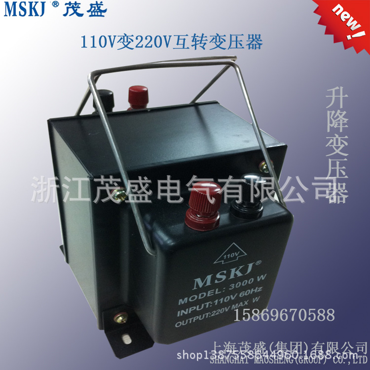 Imported electric cooker electric special transformer blowing coffee machine cooking machine 220V 110V 3000W(China (Mainland))