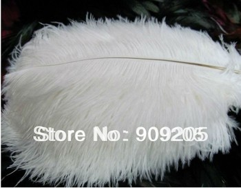 Wholesale dyed feather 10pcs/ lot 35-40cm 14-16inch white ostrich feather, ostrich plumage Free shipping