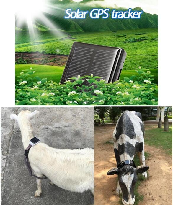 RF-V26 mini pet tracker for animal solar tracker cow , Pigs, cattle gps locator GPS+LBS+AGPS +WIFI waterproof tracker(China (Mainland))