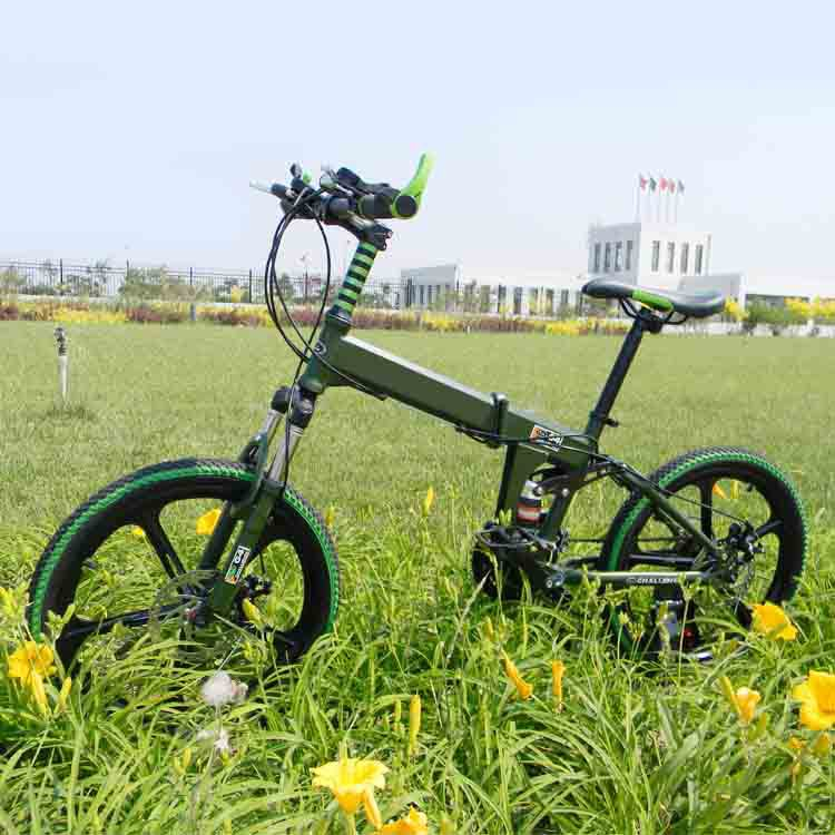 21speed 20 inch folding bicycle mountain bike standard configuration double disc bicy children bicycle unisex biycle(China (Mainland))