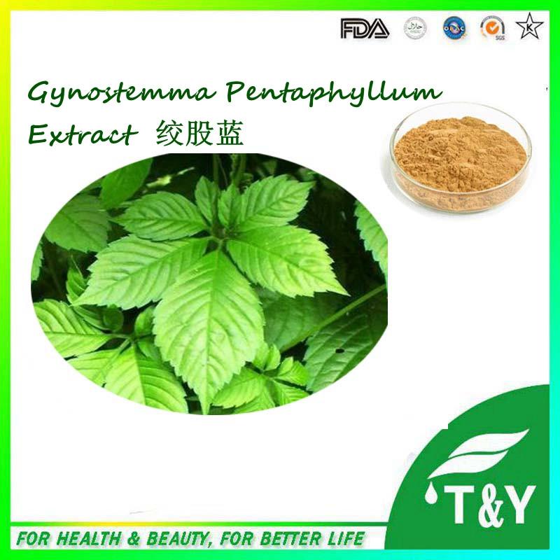 Low price very good effect gynostemma pentaphyllum extract powder 700g/lot<br>