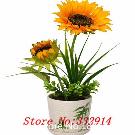 Deal! 100 seeds/pack sunflowers seeds superalloys drought bonsai(China (Mainland))