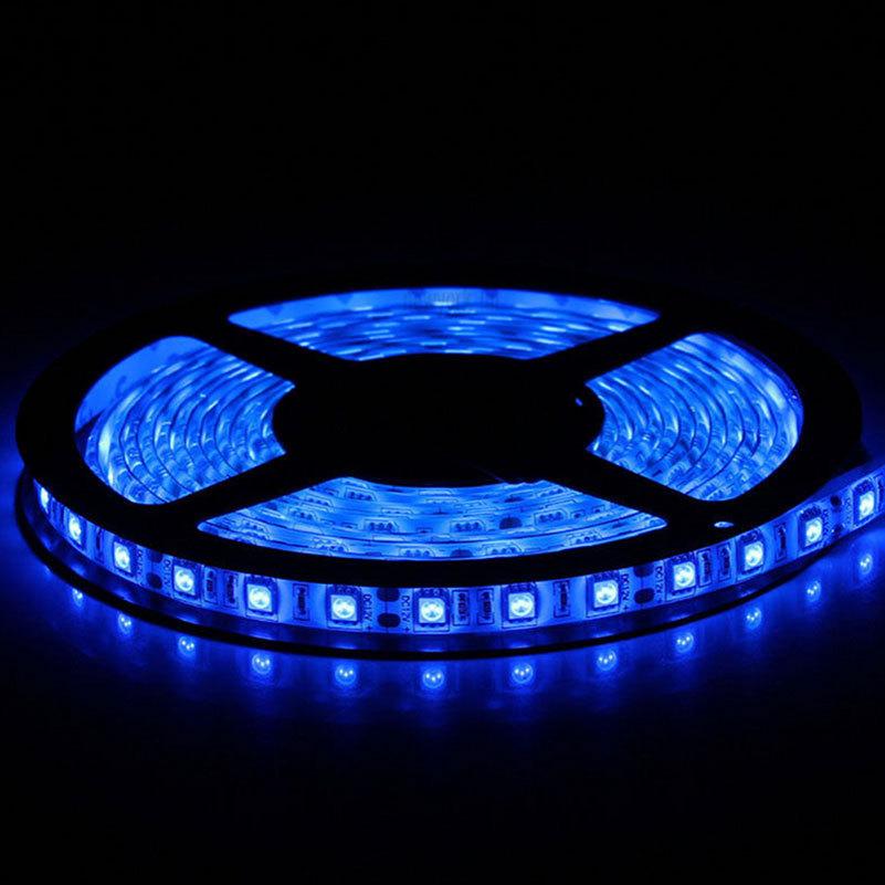 PCB Board Superbright 5050 SMD 300LEDs LED Light Strip Waterproof IP65 Ilexible DC 12v 2A LED Blue Light Strip(China (Mainland))