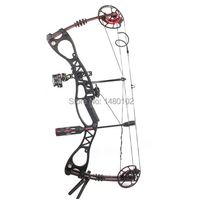 Hunting Bow arrow Set M122 Caesar Compound Bow bow And Archery Set