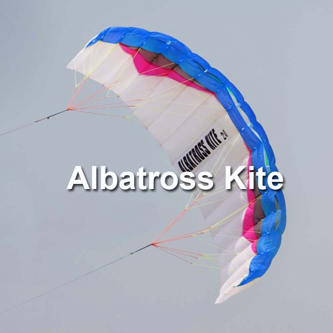 2011 ALBATROSS 2.0M2 power kites /traction kite with lines and straps Free Shipping(China (Mainland))