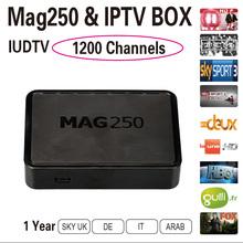 2016 Best Iptv Box 1 Year IUDTV IPTV Arabic Channels Sky IT DE UK Full European Channels With Mag 250 Tv Box Free Shipping