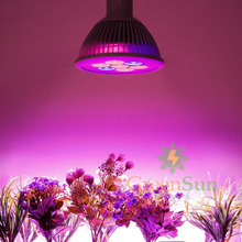 12W/24W E27 LED Red+Blue Plant Grow Light Bulb Hydroponic Garden Indoor Lamp(China (Mainland))