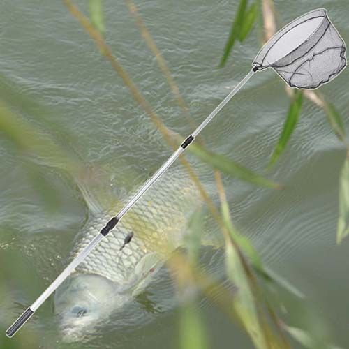 рыболовные сети и сачки