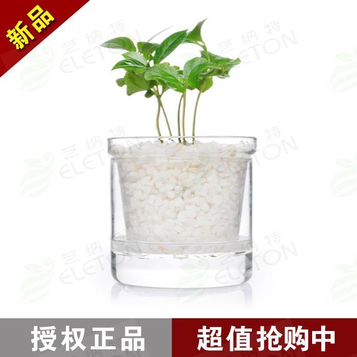 Layered Flower Pots Glass Flower Pot Transparent
