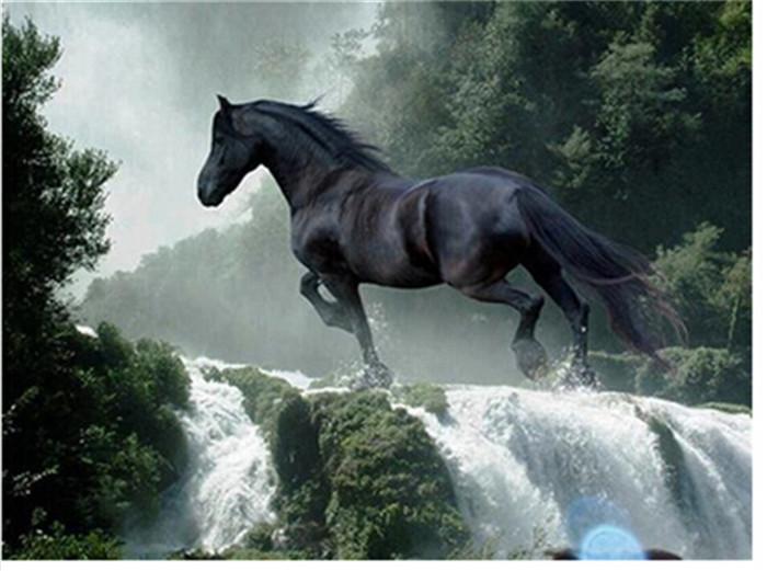 Dark horse wedding
