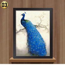 White Black Frame retro peacock pictures for bedroom Modern home decoration wall art animal painting on the wall(China (Mainland))