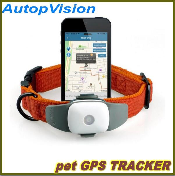 4 P GPS TRACKER para animais gatos cães de appello, Gps de rastreamento, Mini dispositivo de rastreamento app(China (Mainland))
