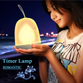 Hanging LED Timer Lamp LED Decorative Night Lights Romantic Portable USB Soft Light Atmosphere Color Changeable
