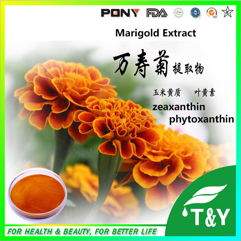 Chinese factory supply Best Marigold Flower Extract Marigold Extract Lutein Powder 300g/lot