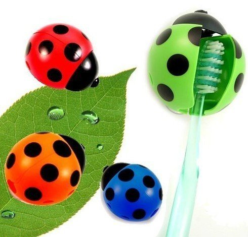 Wholesale Free shipping~5pcs/Lot Toothbrush Holder,Ladybug Toothbrush Holder,Automatic toothbrush holder With suction cups