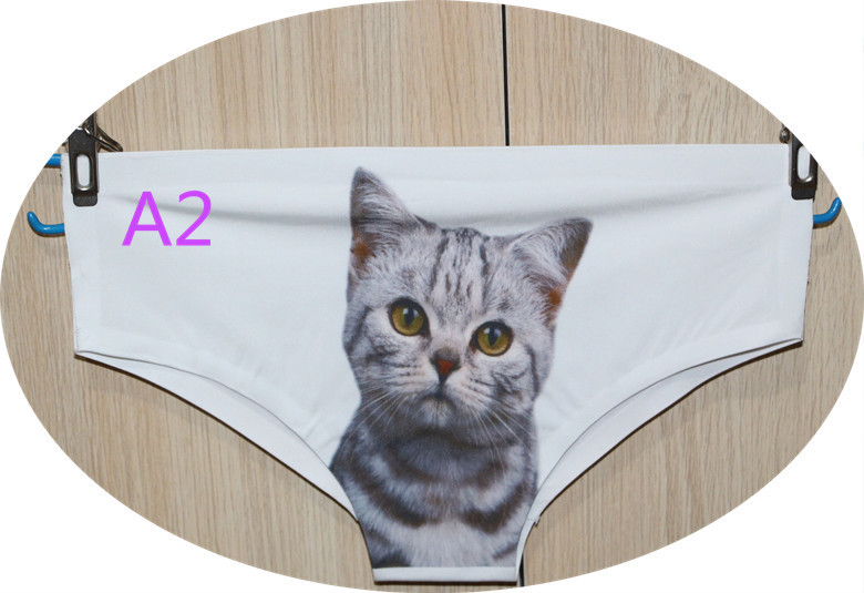 Wholesale Fashion High Quality 3D printing Women Underwear Panty Sexy Briefs Women Seamless Control Girls cat