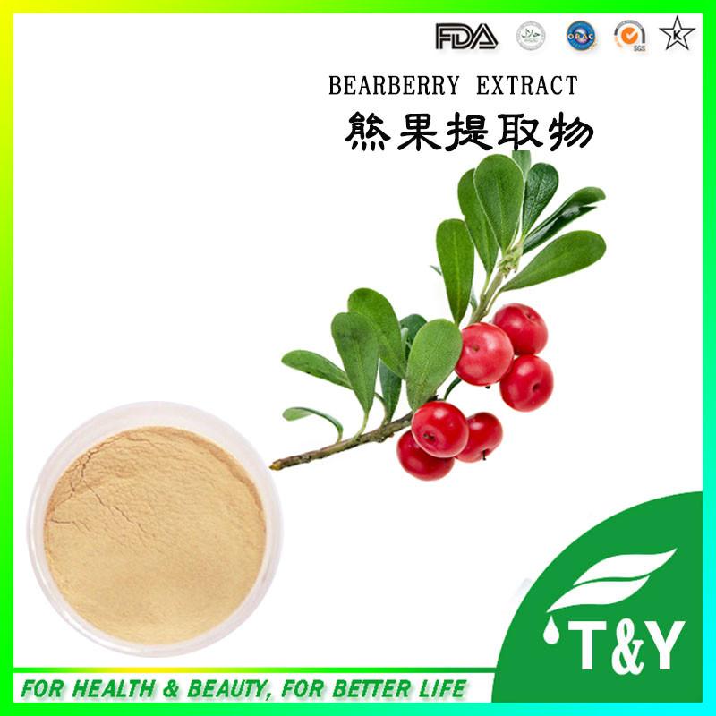 uva ursi extract a arbutin,,bearberry extract Alpha Arbutin powder