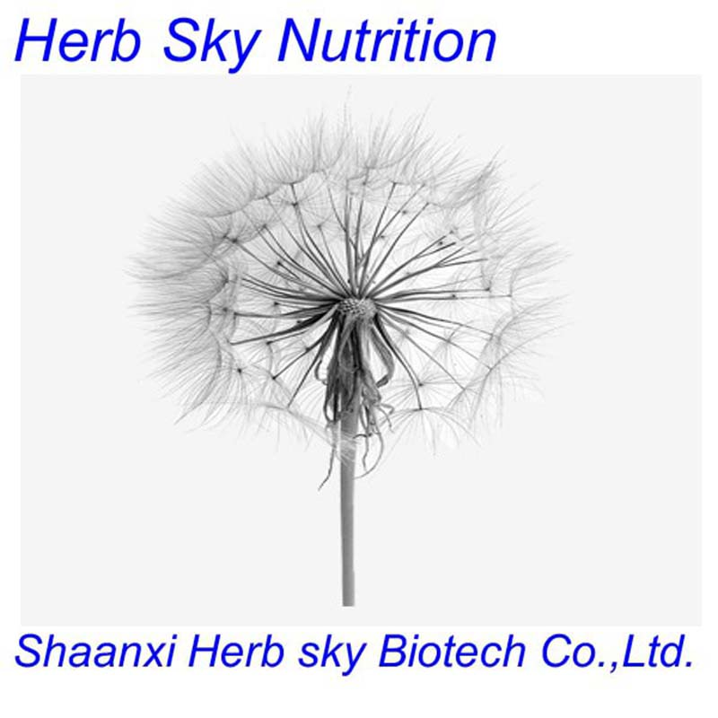 100% natural high quality Dandelion Extract 10:1 500g<br><br>Aliexpress