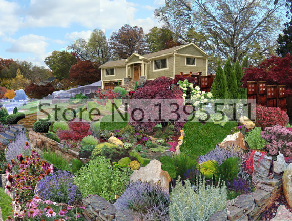 100/bag ROCKERY MIXED FLOWERS seeds; A superb mixture of low growing, bright flowering plants; Easy and fun to grow(China (Mainland))
