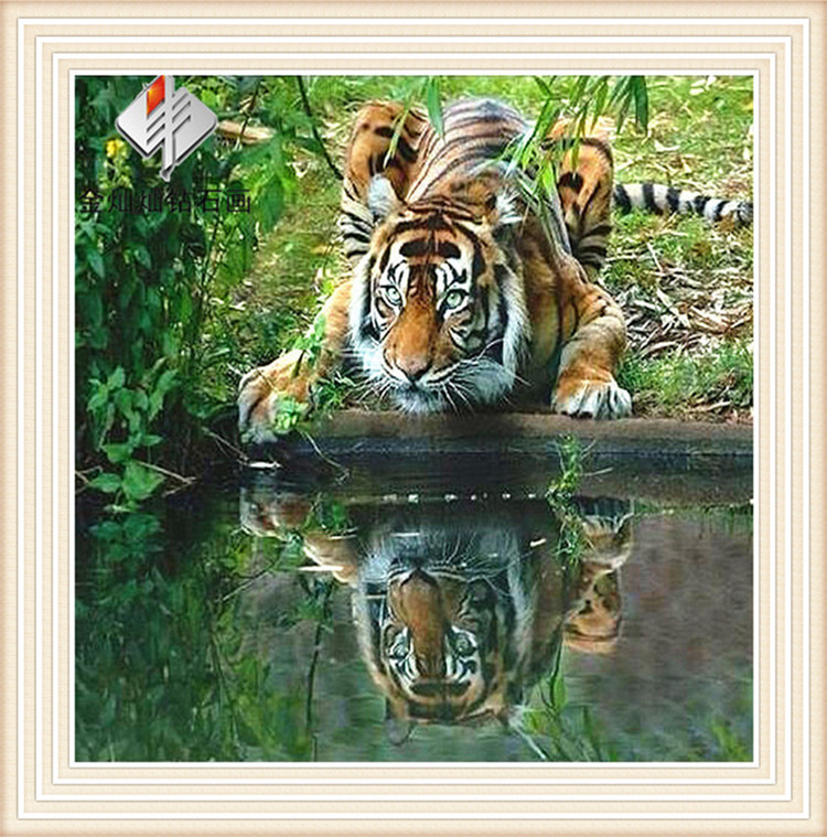 Tiger water Diydiamond painting cross stitch resin square drill full rhinestone sticker Bedroom Decoration free shipping