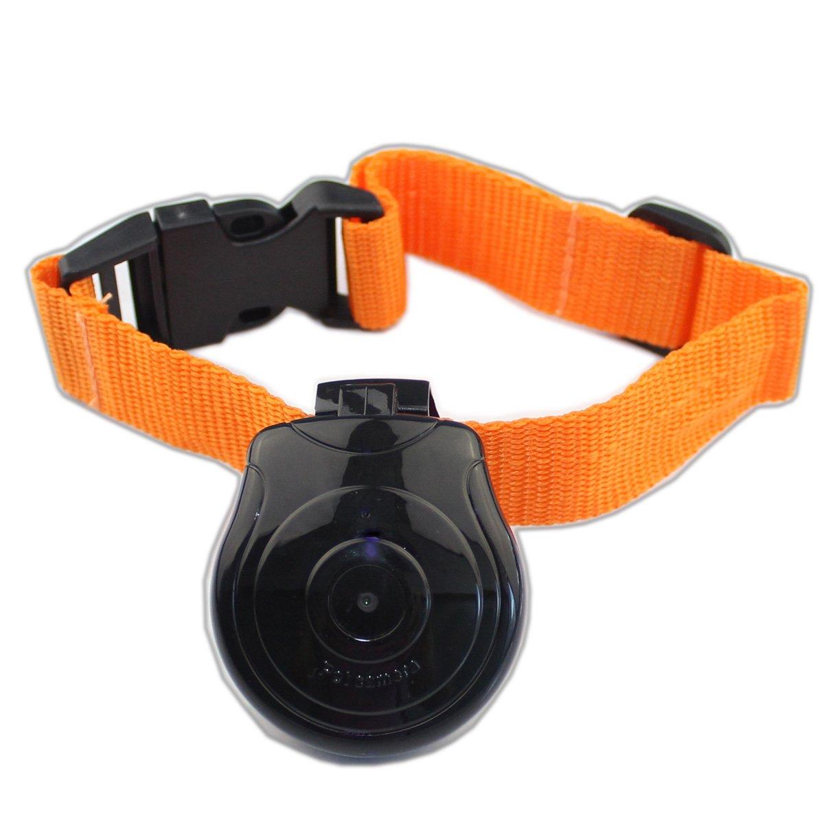GSFY Wholesale Digital Pet Collar Cam Camera Mini Video Recorder Cam Camera DVR Video Recorder Monitor For Dog Cat Puppy Black