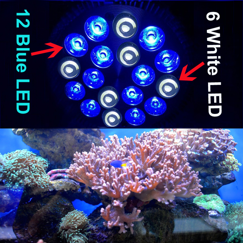 Aquarium Light Bulb Saltwater Coral reefs & aquarium fishes tank Light ...
