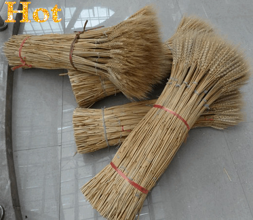 ear of wheat dried wheat decor wedding decorations offer silk flower vase dried flowers Camera wheat christmas countryside t2(China (Mainland))