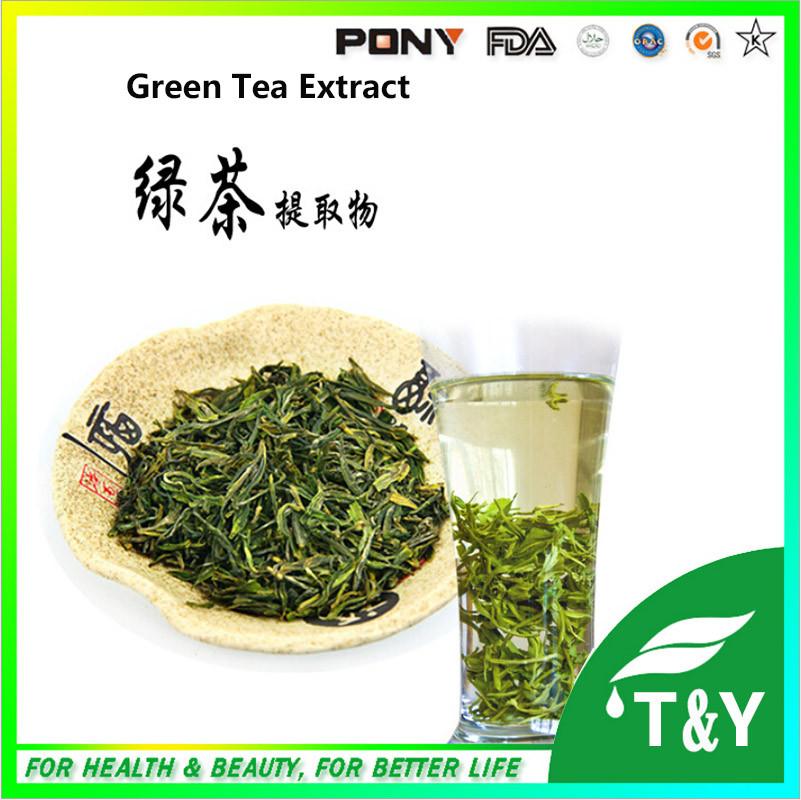 100% Purity Natural Extract green tea PE Tea polyphenol 10%<br>