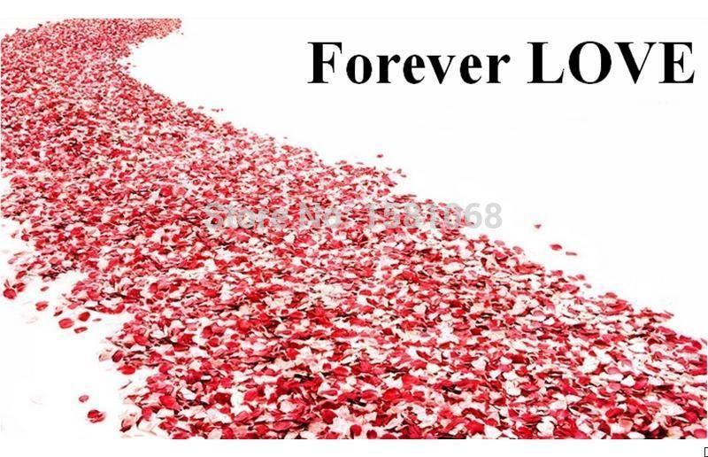 100pcs Chic Silk Rose Flower Petals Leaves Wedding Party Decoration.ADJR.(China (Mainland))