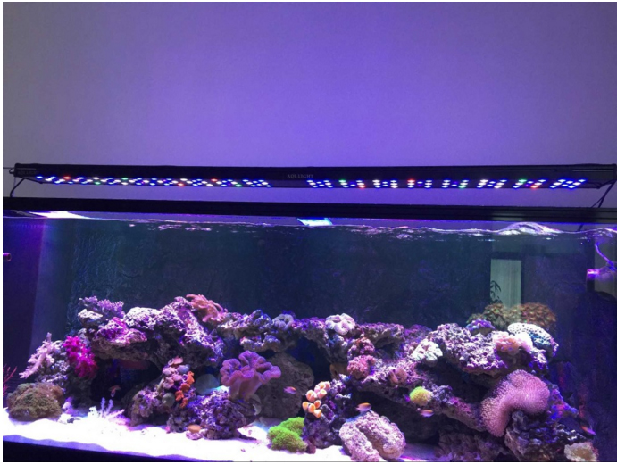 Popular 48 reef light buy cheap 48 reef light lots from for Saltwater fish tank lights
