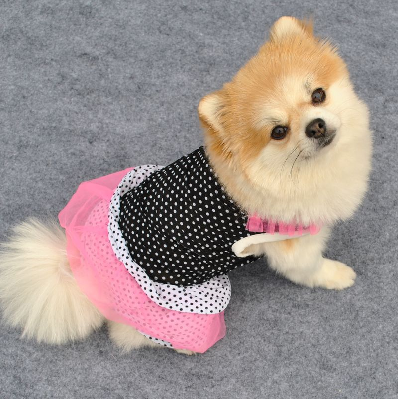 Spring Summer Pet Dog Cat Dress Comfortable Stretch Cotton Dog Dress White And Black Color Size XS-L Free Shipping(China (Mainland))