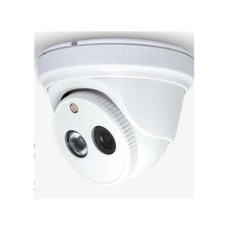 1200TVL Video Surveillance Security HD CCTV IP Camera Outdoor Door 360 Degree Rotation 1280x960 DPI - HarSin E-commerce Trade Co., Ltd. store