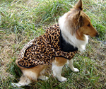 Leopard print big dog clothes autumn and winter vest camouflage pet clothes for large dogs Cotton Jacket(China (Mainland))